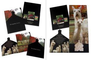 Accoyo Alpaca Farm_Presentation Folder